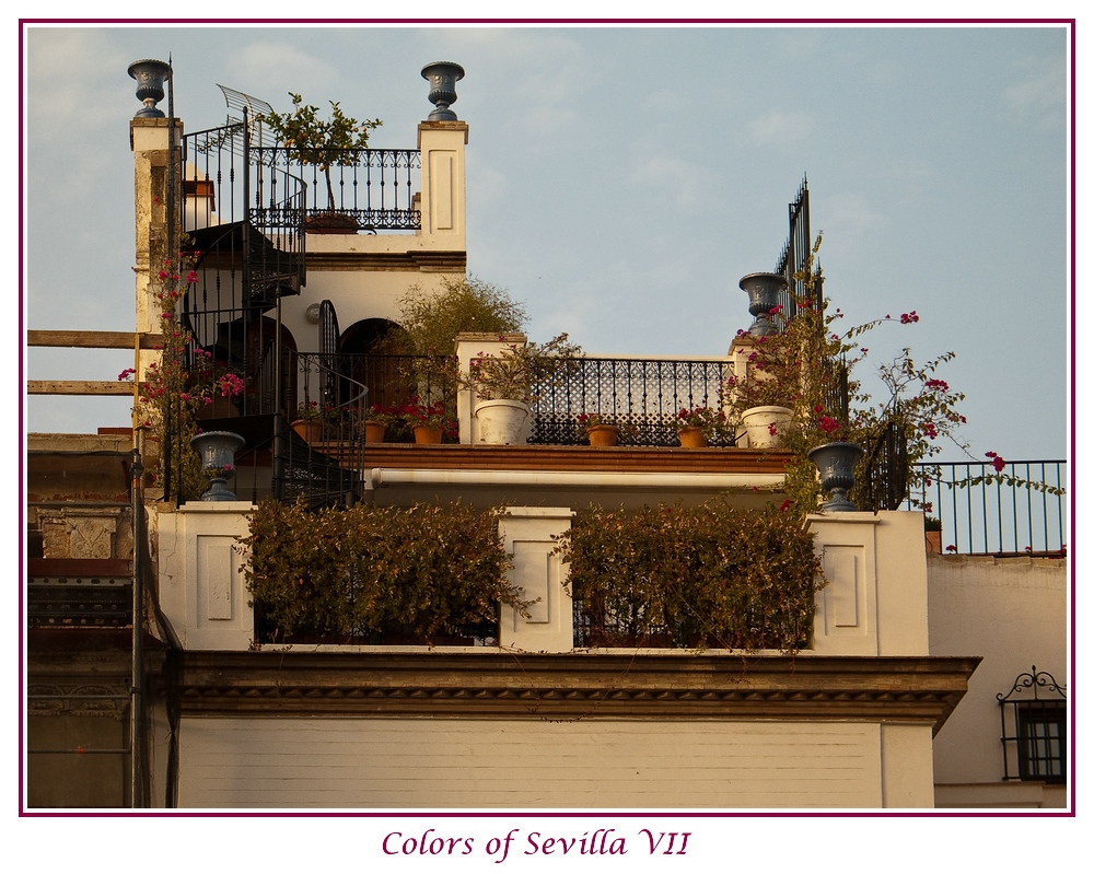 Colors of Sevilla VII
