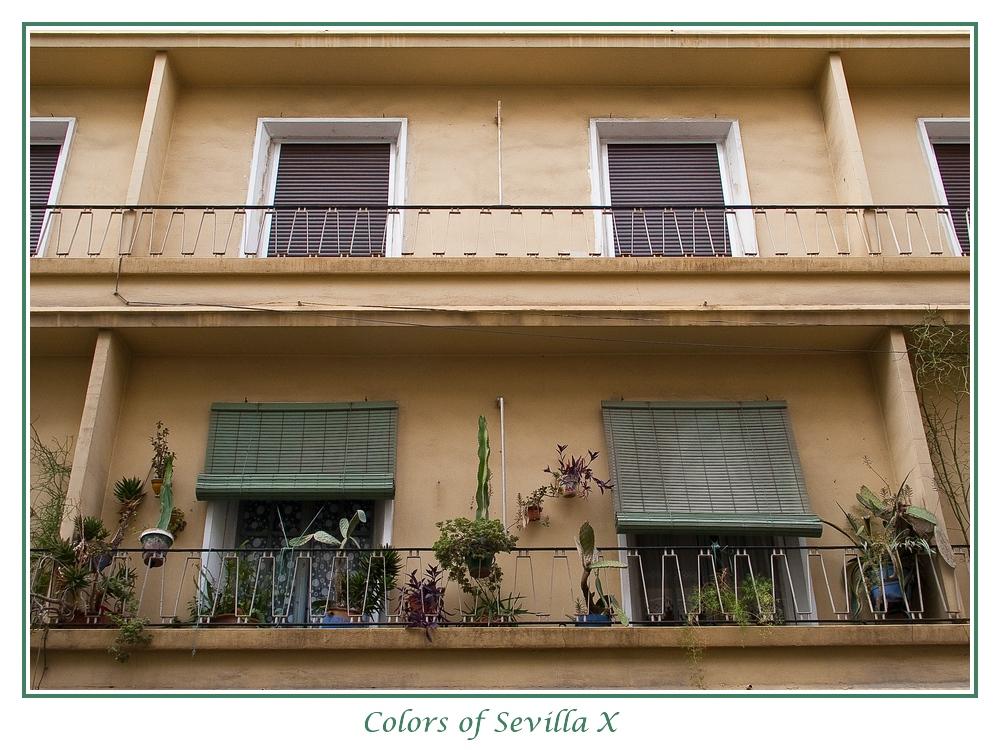 Colors of Sevilla X