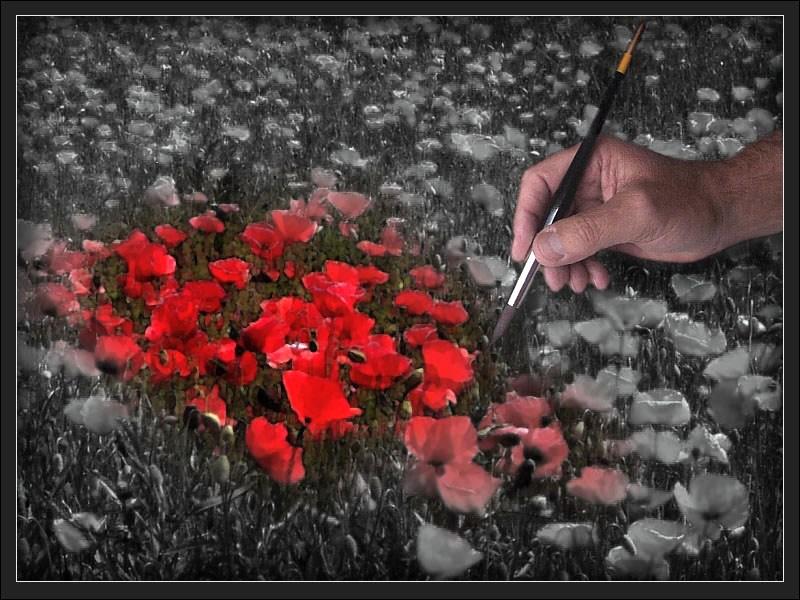 colour my world...