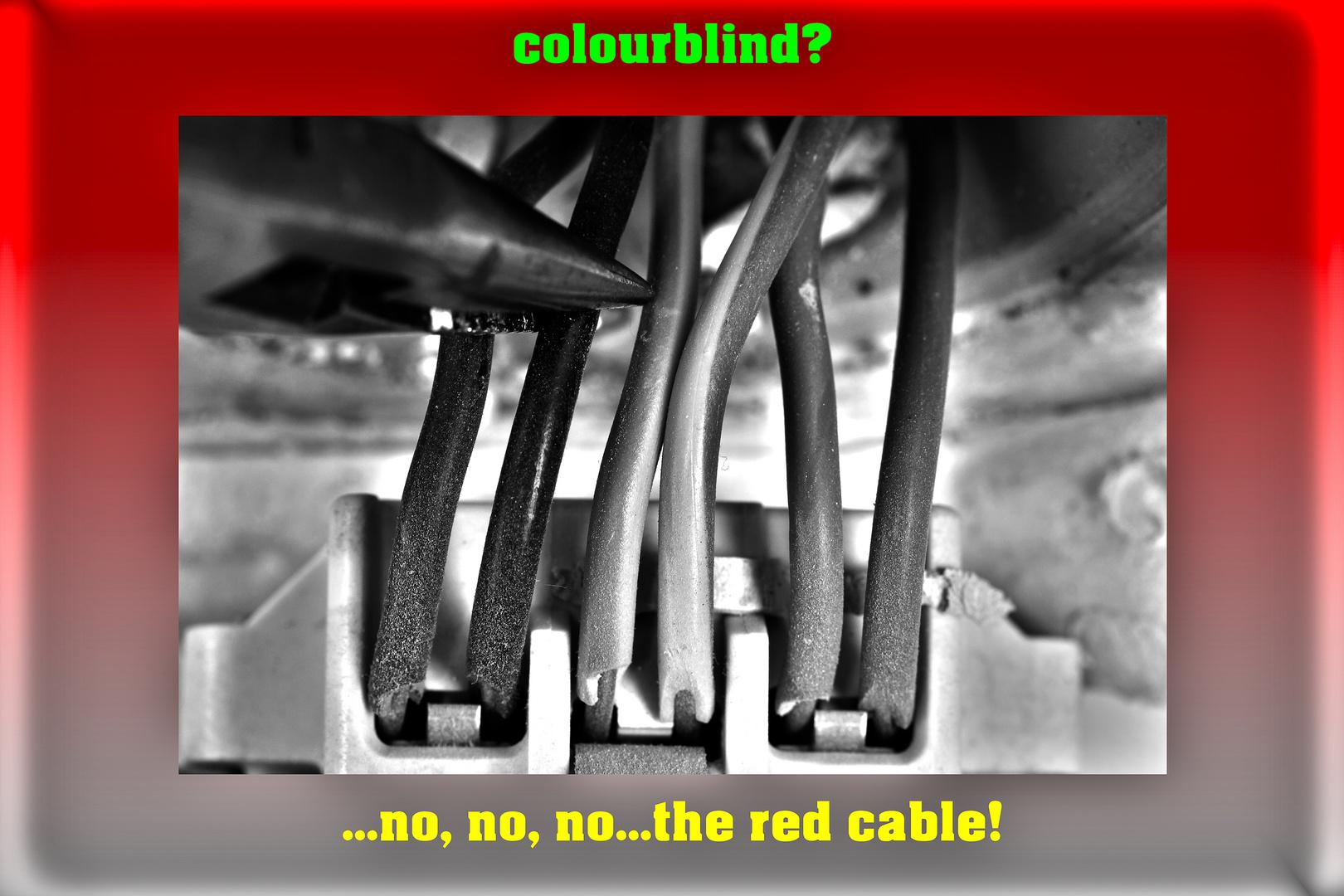 Colourblind hier nix gut