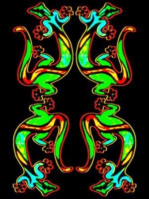 coloured gecko mandala
