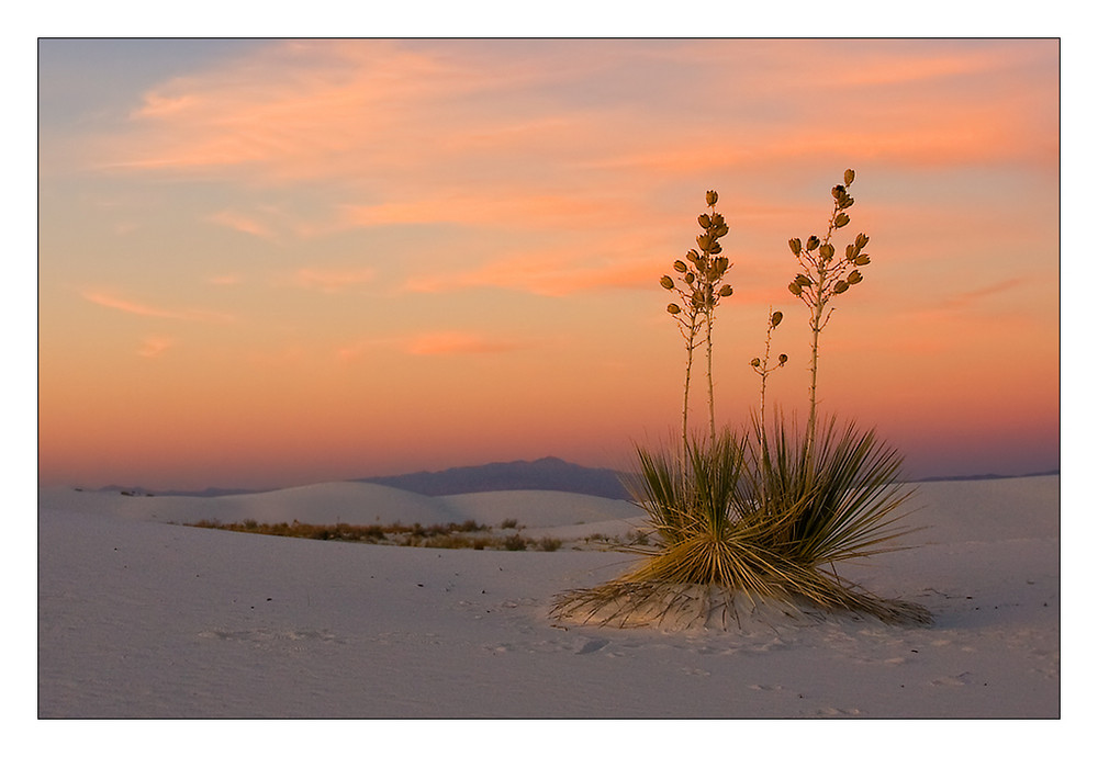 Colourful White Sands