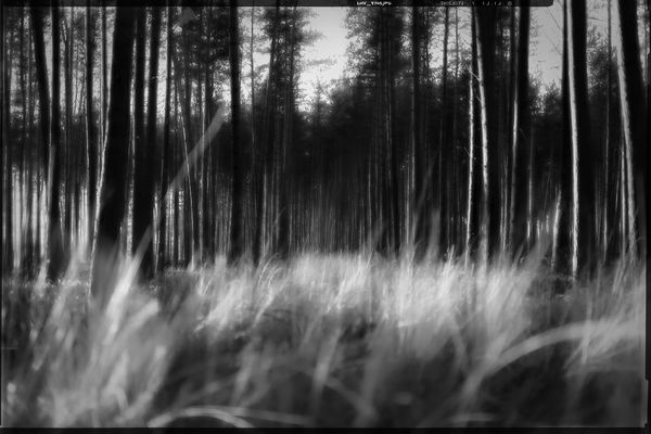 colourless • lands 3.0
