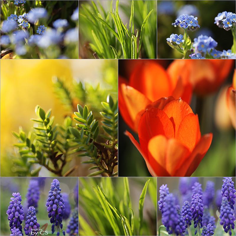 *** colours ... ***
