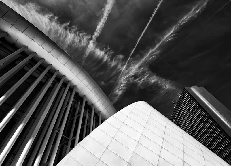 Columns & Lines II