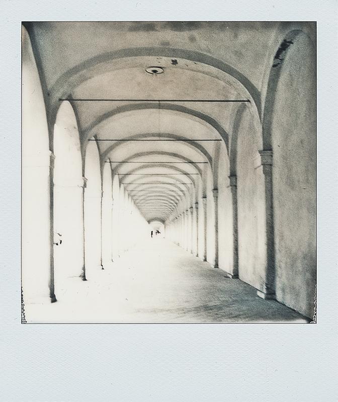 """Comacchio"" polaroid sx70"