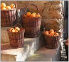combien les oranges ?