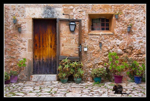 Come in... Pollenca, Mallorca