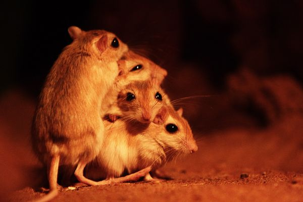 Come on..... group hugs!!