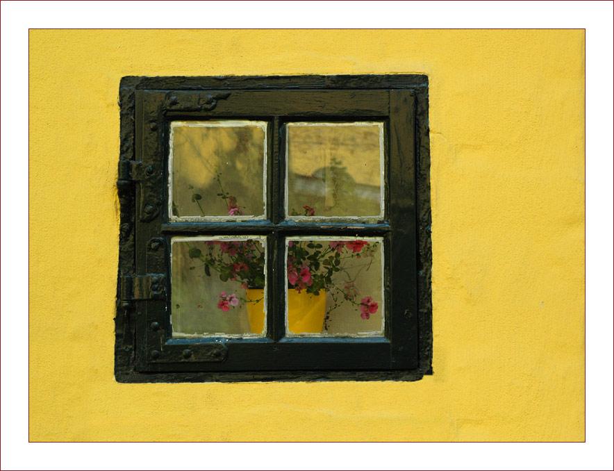 Come to my Window I