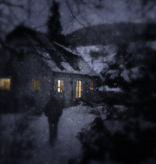coming home on a snowy evening