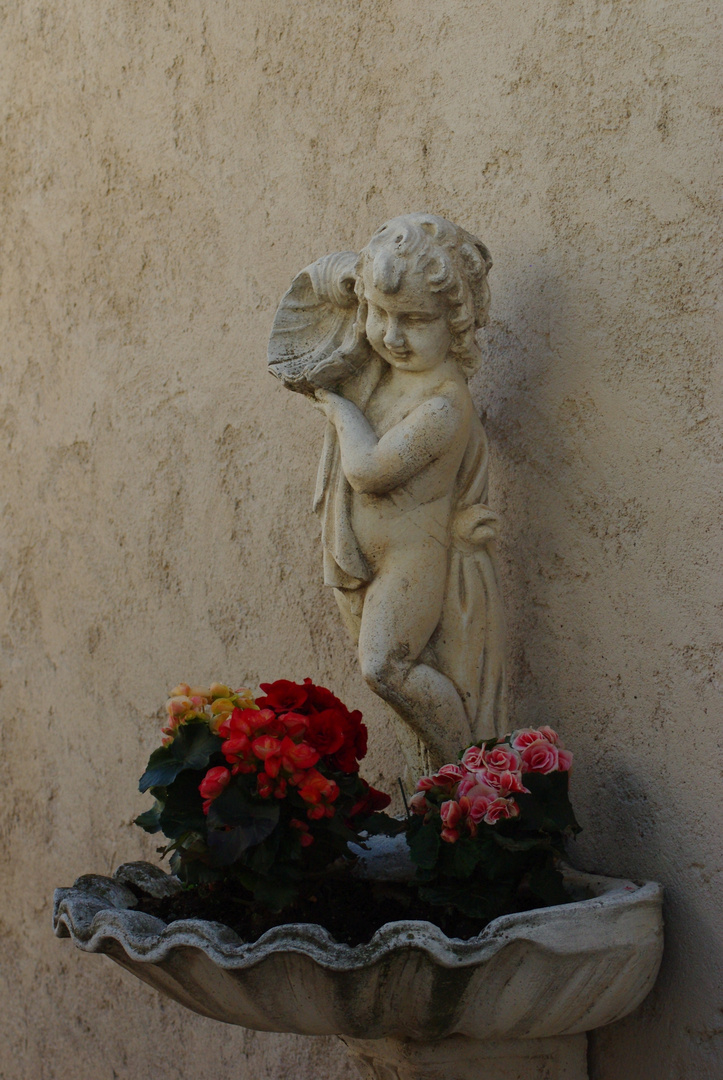 """"""" Comme à cette fleur, la vieillesse fera ternir votre beauté. """" Pierre de Ronsard."""