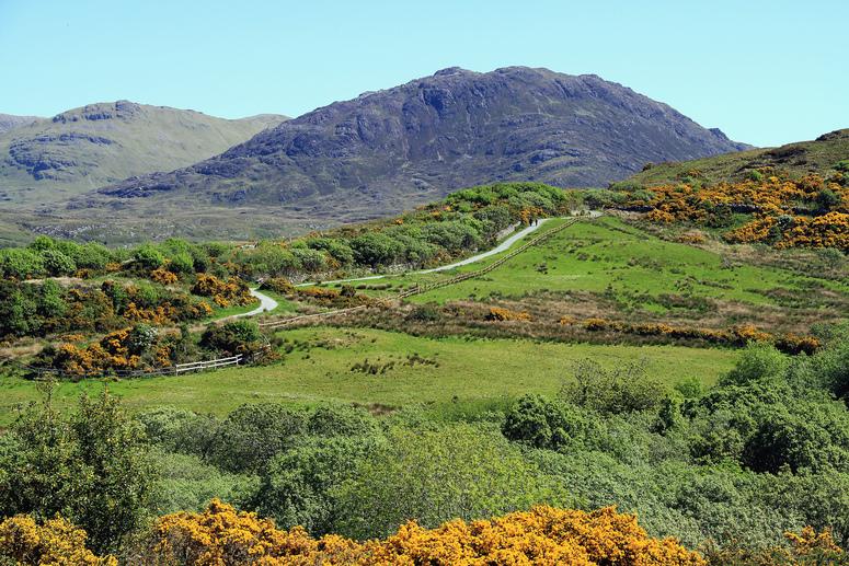 Connemara National Park 1