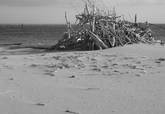 construction naturelle