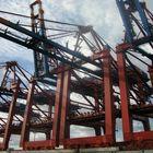 Containerbrücken wasserseitig beim Container Terminal Altenwerder