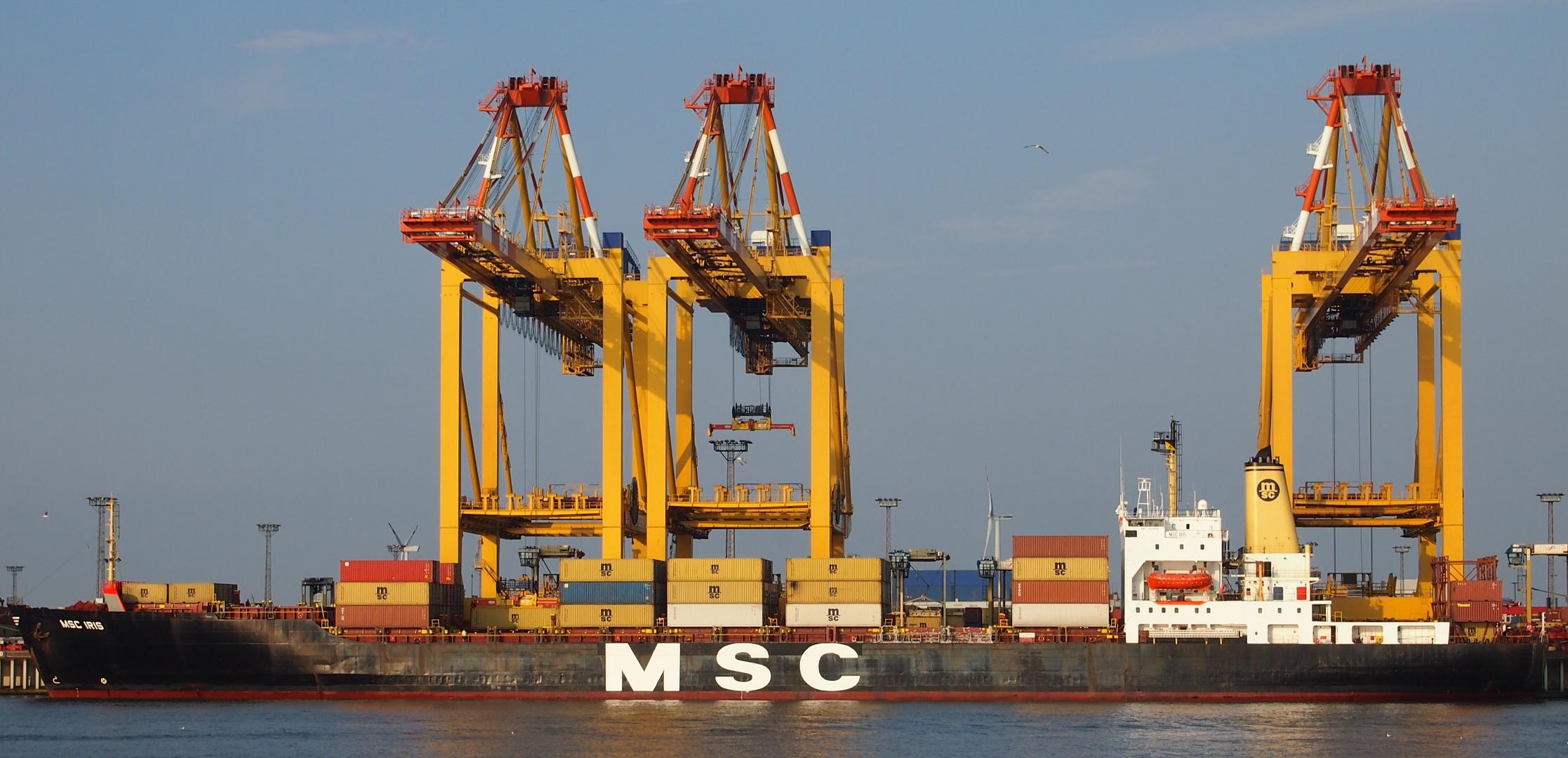 Containerschiff MSC Iris