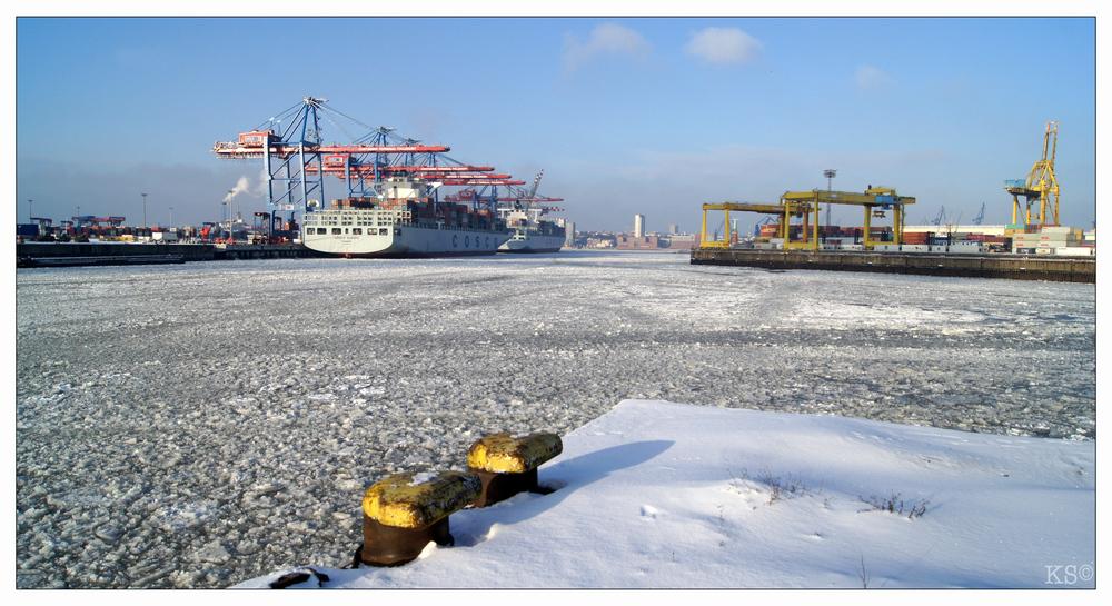 Containerterminal Tollerort