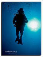 Contraluz debajo del agua