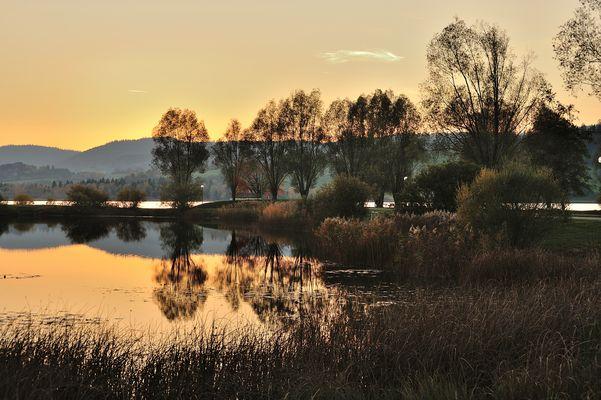 Contre-jour au lac de Remoray - Doubs