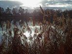 contre jour sur l'étang, L'Isle Adam (95)