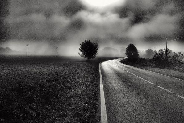 Convogli di silenzi nelle strade deserte