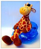 Coole Giraffe