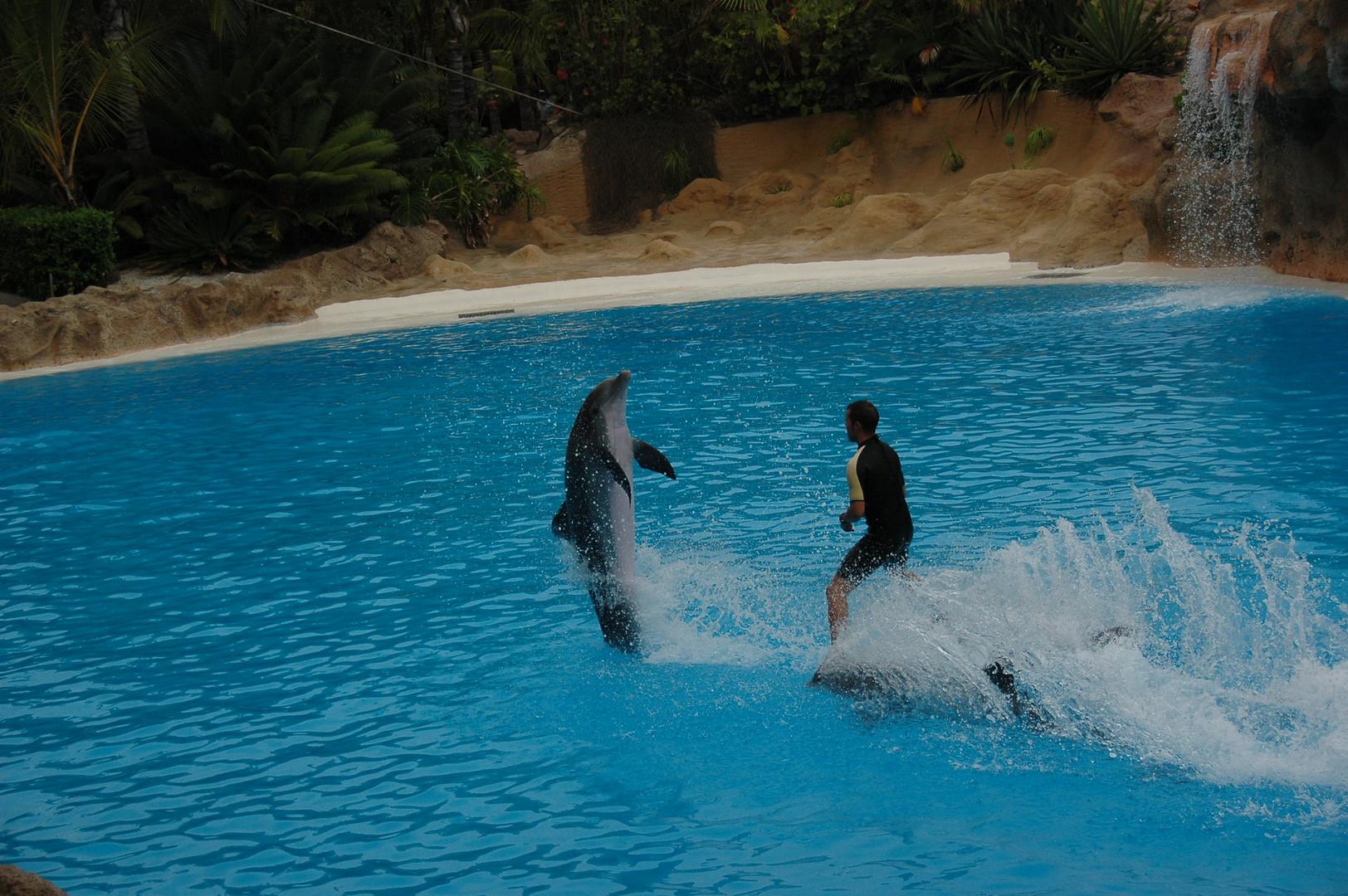 Cooler Stunt!!!