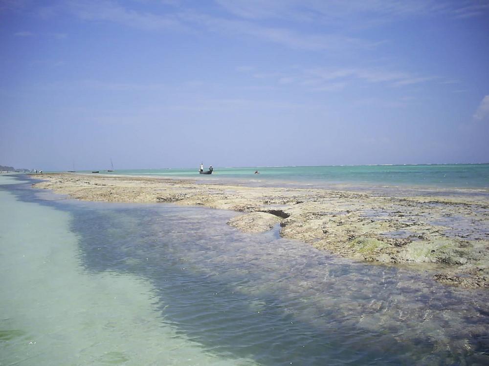 Coral barrer in Kenya ( Indian Ocean )