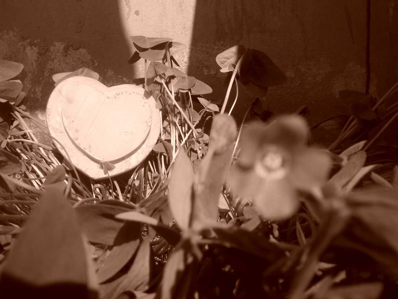 corazon sepia