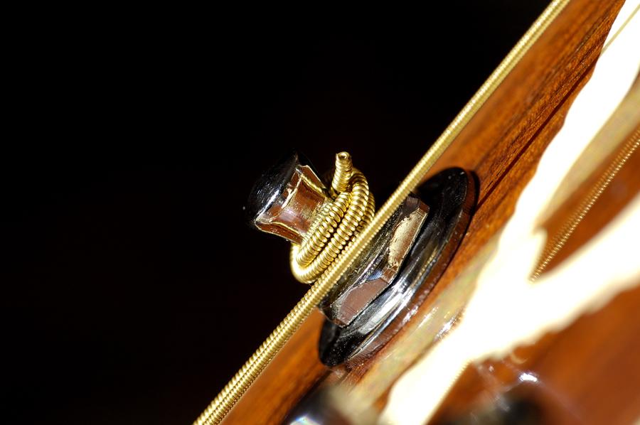 ...corde della mia chitarra...