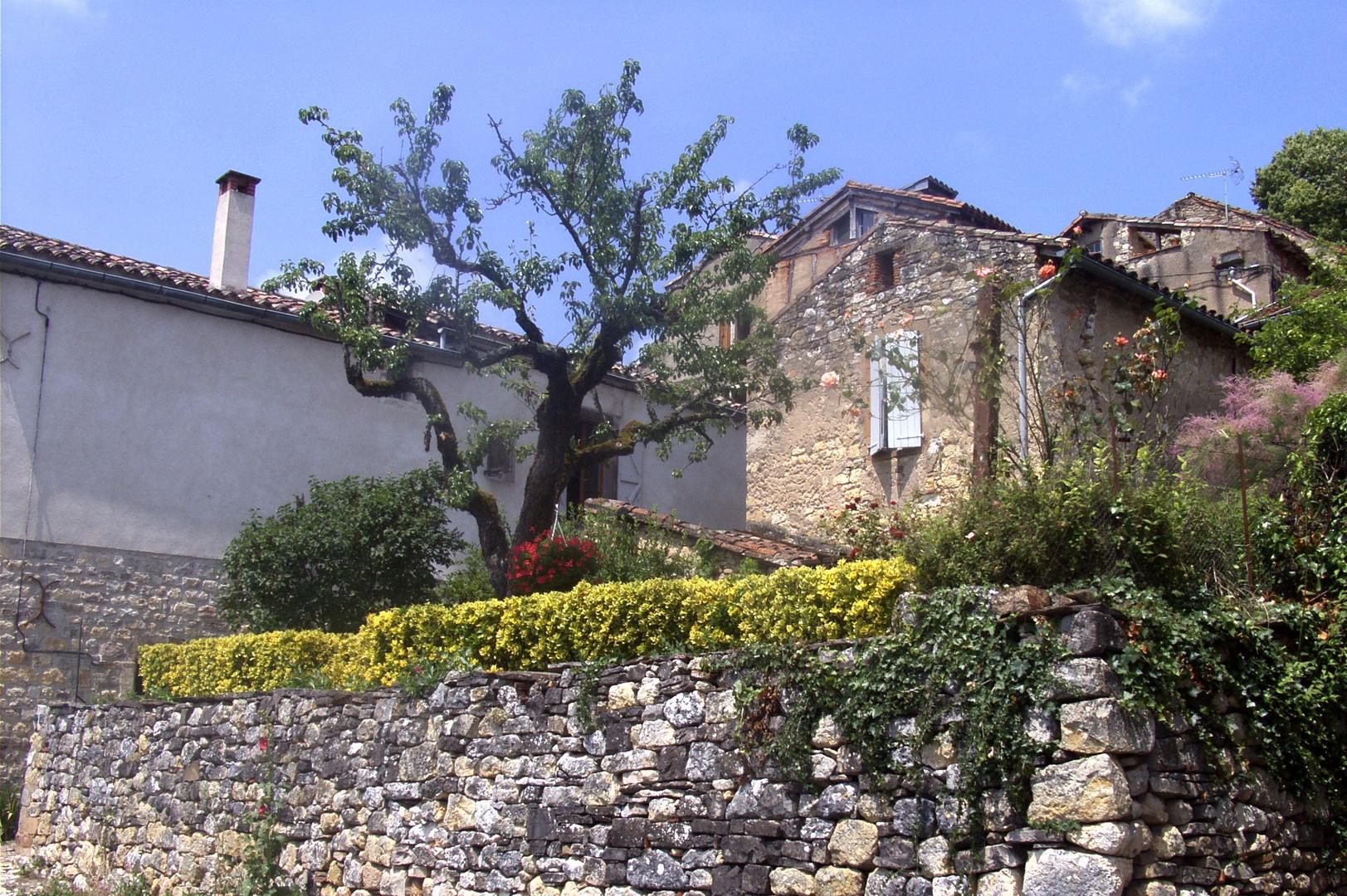 Cordes-sur-Ciel (6)