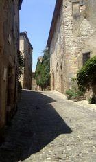 Cordes-sur-Ciel (8)