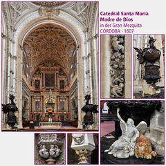 Córdoba · Catedral Santa María Madre de Dios III