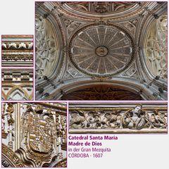 Córdoba · Catedral Santa María Madre de Dios IV