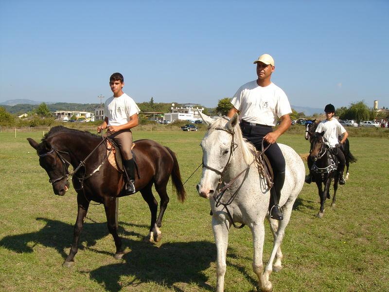 CORFU-HORSES-6