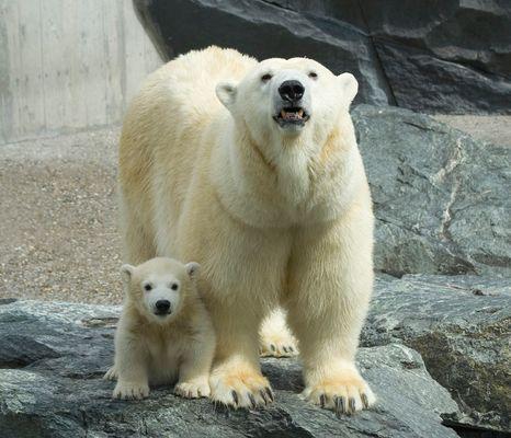Corinna und Wilbär