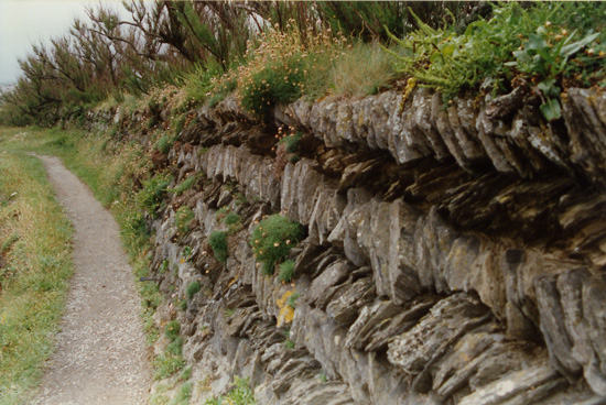 Cornish Wall