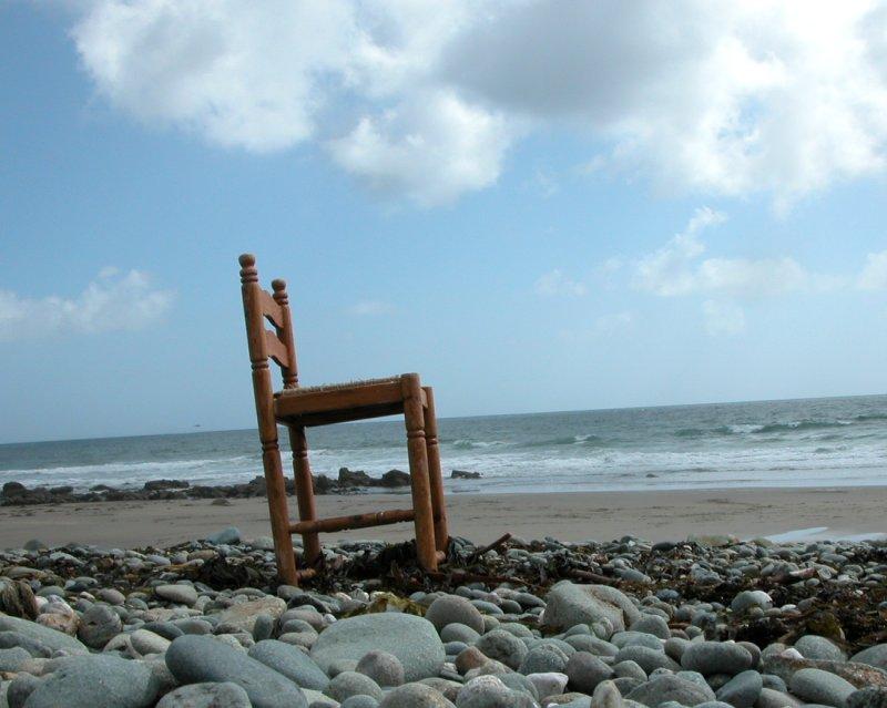Cornwall -- Treibholz