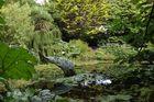 Cornwalls schöne Gärten