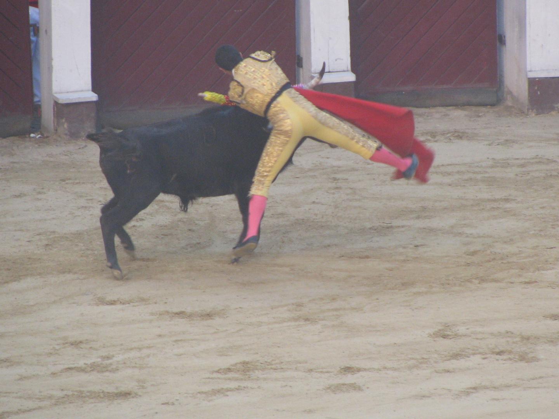 CORRIDA DE TOROS BOGOTA - COLOMBIA