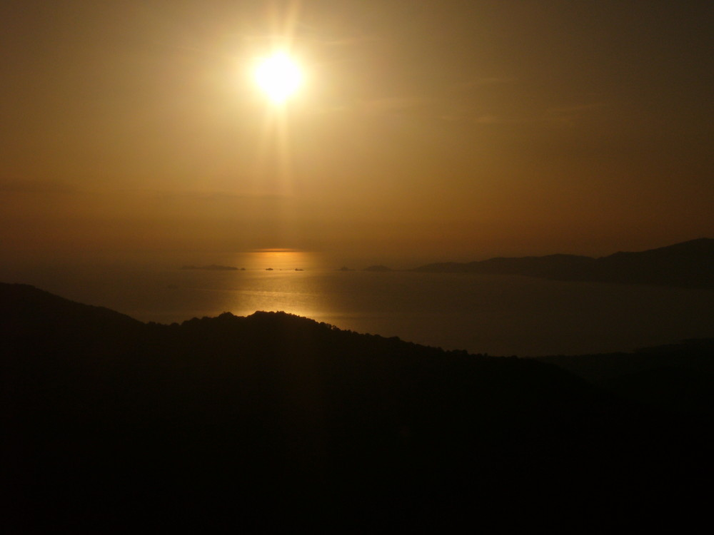 Corse d'Or