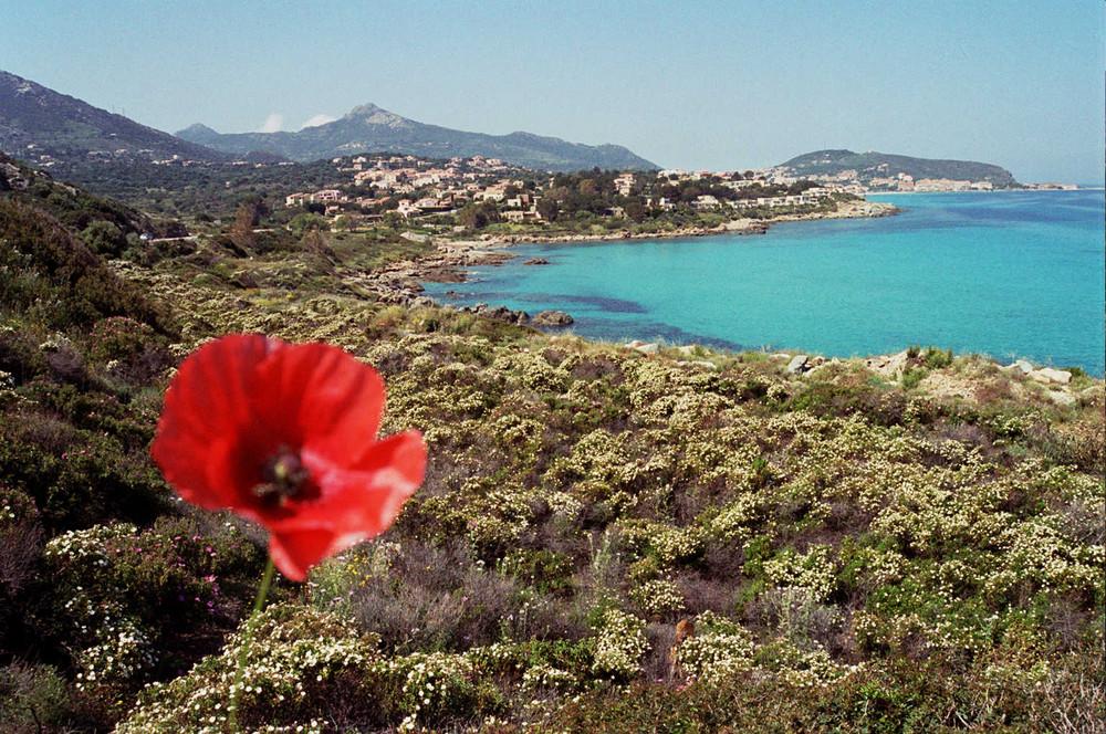 Corsica - 1