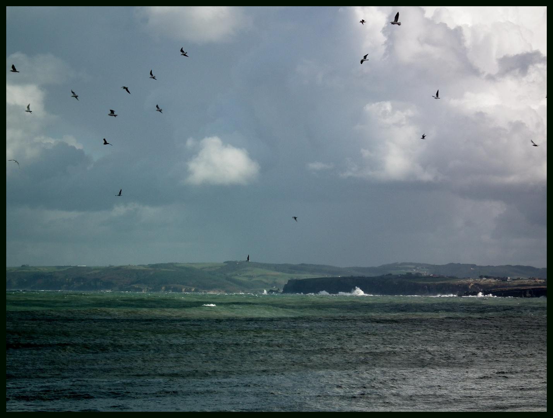 costa cantabra( desde el sardinero )