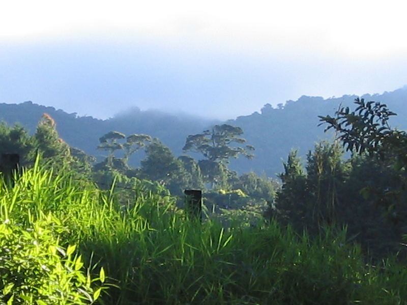 Costa Rica Mittelamerika