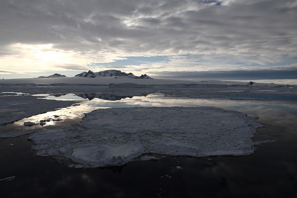 Cote de la péninsule Antarctique