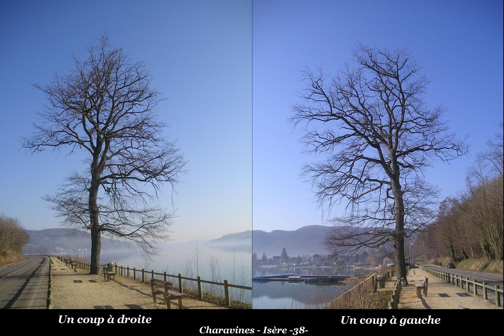 Côté droit & côté gauche Charavines Isère -38-