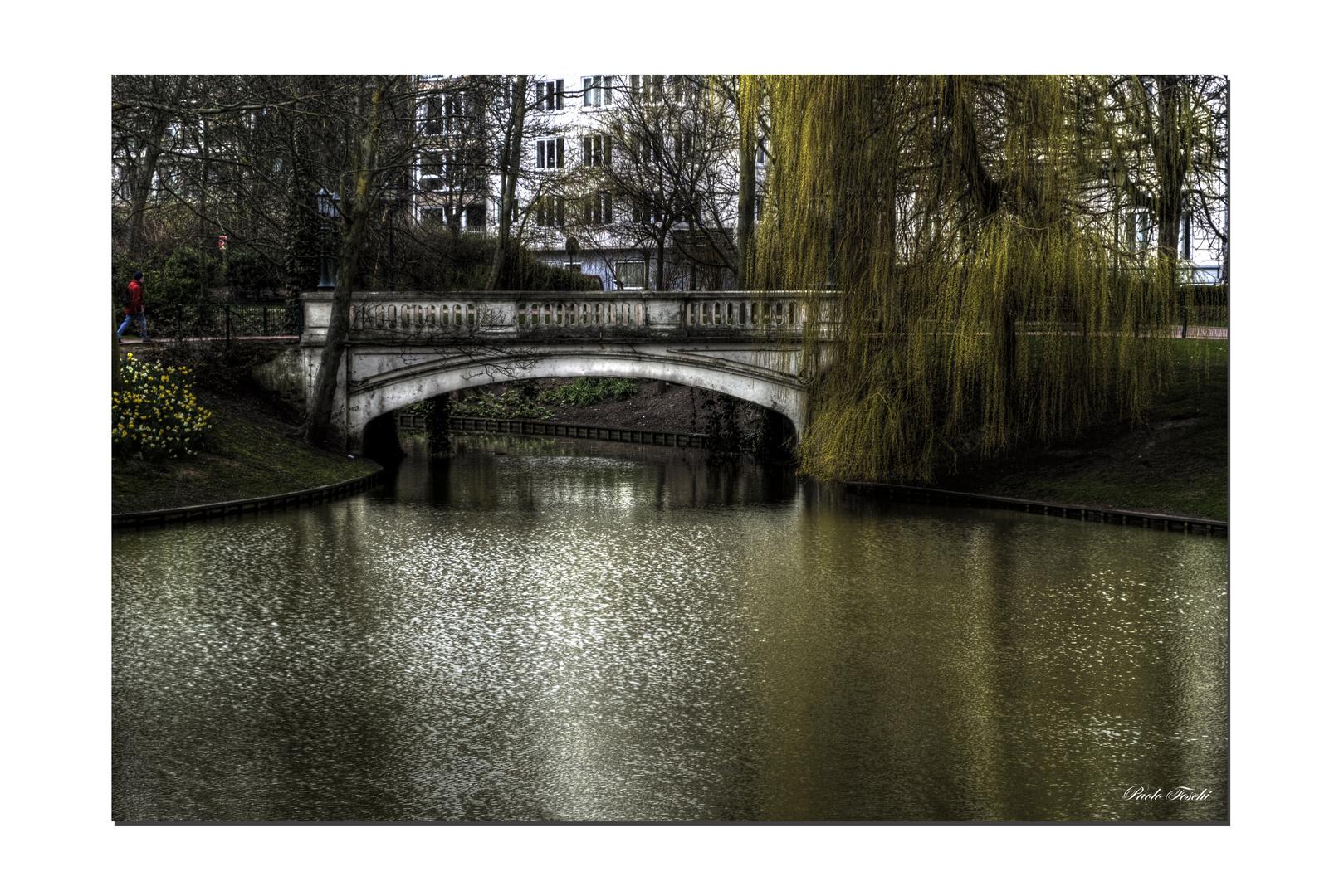 ...Côté jardin 2 .....