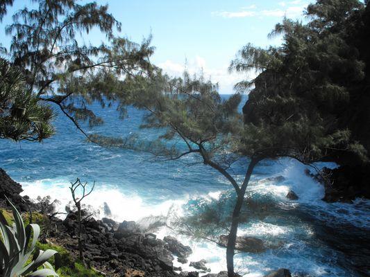 Côte sauvage(ile de la Réunion)