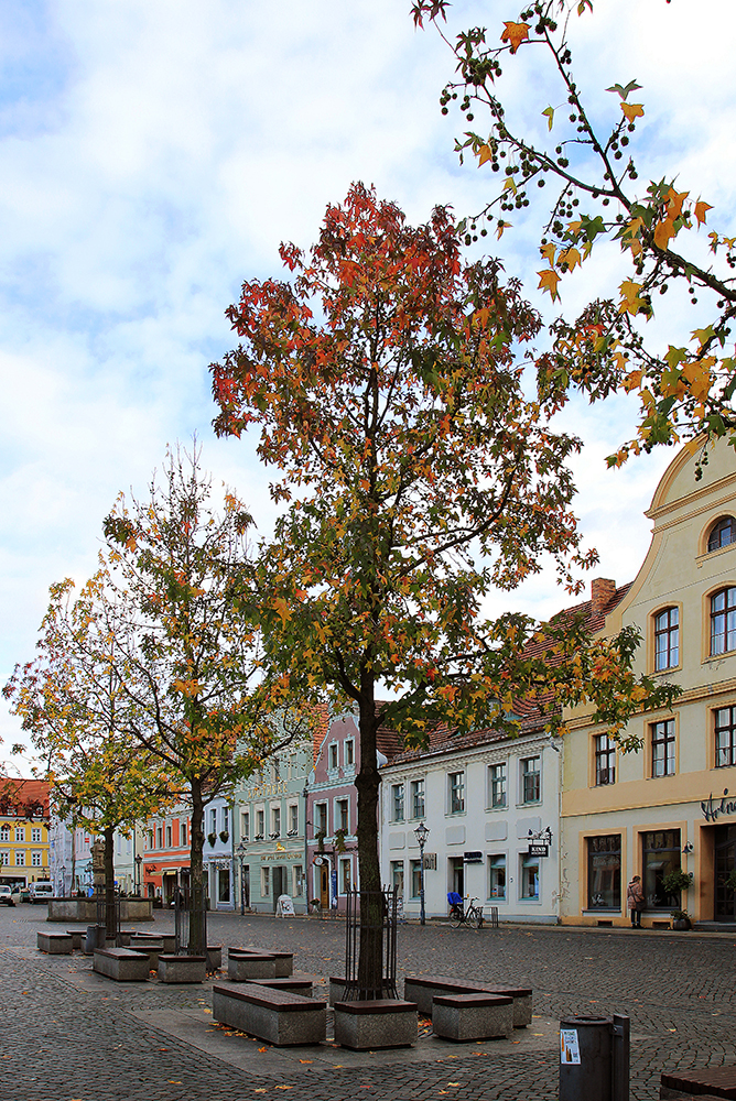 Cottbus Altmarkt im November 2