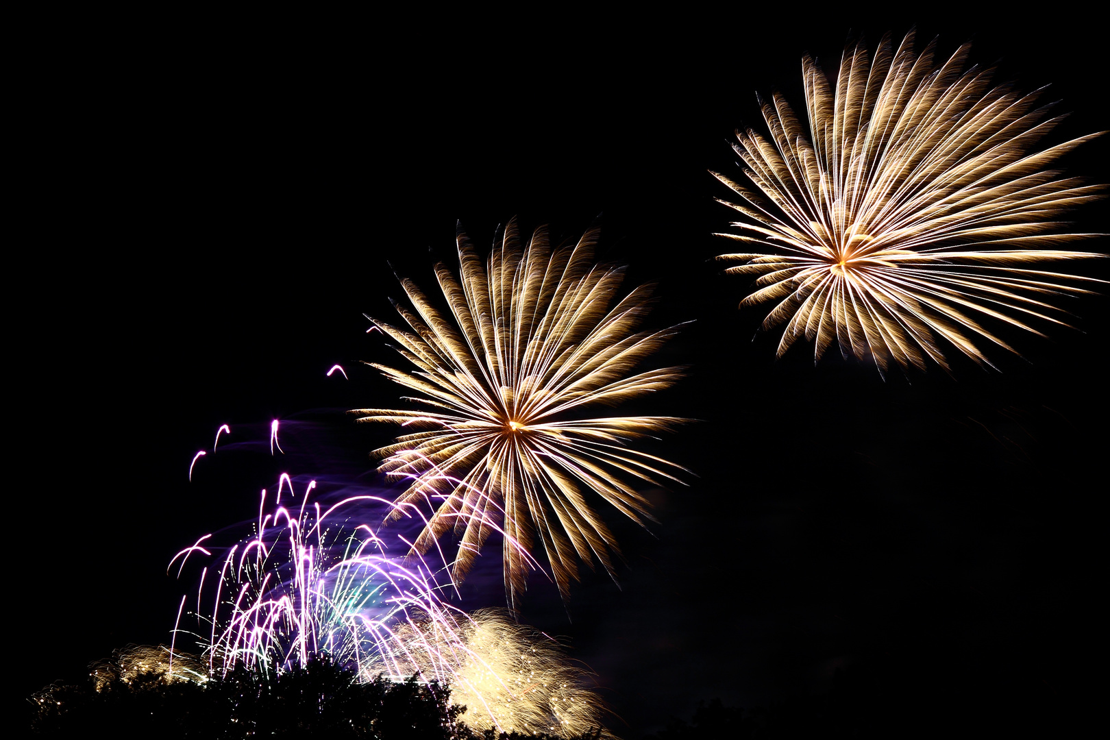 Cottbusser Spreeauennacht Feuerwerk